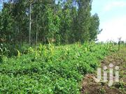 Large Piece of Land for Sale Near Lira University | Land & Plots For Sale for sale in Nothern Region, Lira