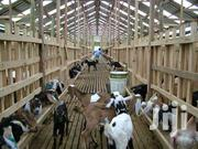 Goats And Cattle Farm Structures Construction | Livestock & Poultry for sale in Central Region, Kampala