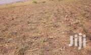 2 Acre Land In Gulu Chopil For Sale | Land & Plots For Sale for sale in Nothern Region, Gulu