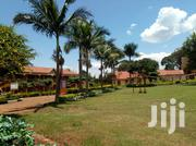 Both Secondary And Primary School On Quicksale In Luwero Many Students | Commercial Property For Sale for sale in Central Region, Kampala