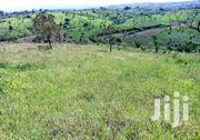 150 Acres Of Land In Kamwenge For Sale | Land & Plots For Sale for sale in Western Region, Kamwenge