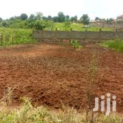 13 Decimals Plot Of Land For Sale In Gayaza Nakwero | Land & Plots For Sale for sale in Central Region, Kampala