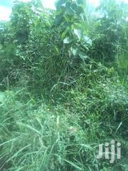 Land In Masaka Road For Sale | Land & Plots For Sale for sale in Central Region, Masaka