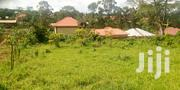 1 Acre Land In Namugongo For Sale | Land & Plots For Sale for sale in Central Region, Kampala