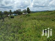 Half Acre Viewing Lugazi Town | Land & Plots For Sale for sale in Central Region, Mukono