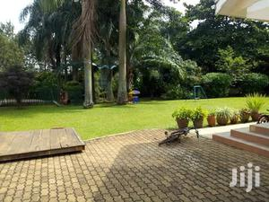 Spacious Five Bedroom House for Rent in Bugolobi With a Swimming Pool