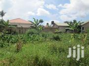Cheap Land In Kirinya Along Bukasa Road For Sale | Land & Plots For Sale for sale in Central Region, Kampala